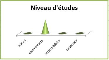 Francois_niveau-etudes